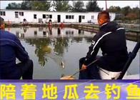 地瓜钓鱼视频
