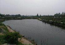 木兰围场垂钓园