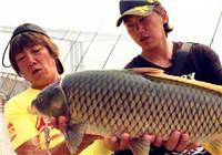 《高桥淡水行》第04集 重庆长寿湖作钓之行