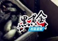 《东北渔事》辽宁众信黑黄金抢鱼套餐快捷使用方法