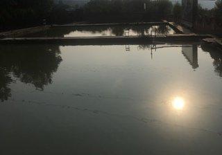 紫荆潭垂钓园