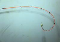 筏釣翹嘴技巧與筏釣線組、餌料、筏竿選擇