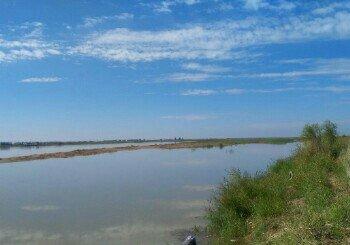 小白河东岸对面黄河回水湾