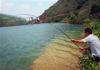 手竿钓大鱼容易跑鱼的常见原因(下)