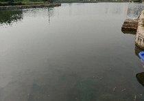 兄弟营钓鱼场