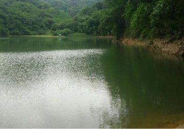 跃进果园池塘