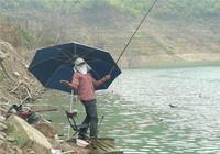 野钓与黑坑钓鱼用饵差别