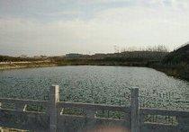石榴山小水库