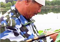 《三本先生》傳統釣第103期 雨天尋找釣場(下)