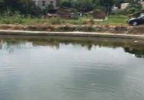 龙山渔乐圈钓场