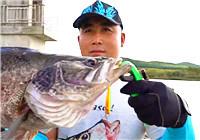 《蓝旗鱼小汐路亚视频》 东北路亚印象之初秋的鹤岗
