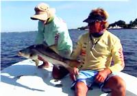 《水库钓鱼视频》 钓友相约水库作钓海鲈