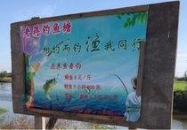 老蒋钓鱼塘