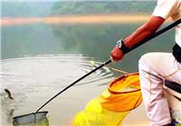 《水库钓鱼视频》 男子水库钓鱼连竿上鱼