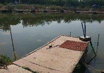 聚贤钓鱼场