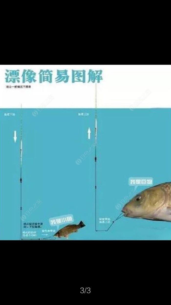 钓鱼方法_最完整的跑铅钓法图解教程 让你钓无虚发 - 钓鱼之家