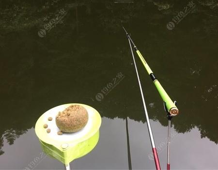 山鷹潭度假村黑坑之旅 天元餌料釣鯉魚