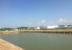 先鋒漁樂園
