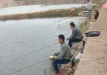 鱼乐垂钓园