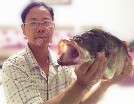狂上鲤鲫在深秋。 龙王恨饵料钓鲤鱼