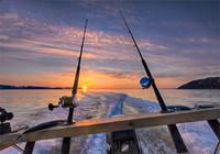 海钓矶钓最常见的几种方式
