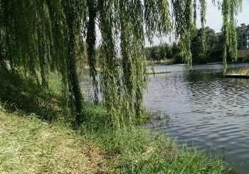 黄家村大坝