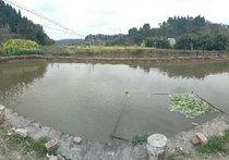 二合华明钓鱼场