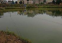 株木山休闲钓鱼场