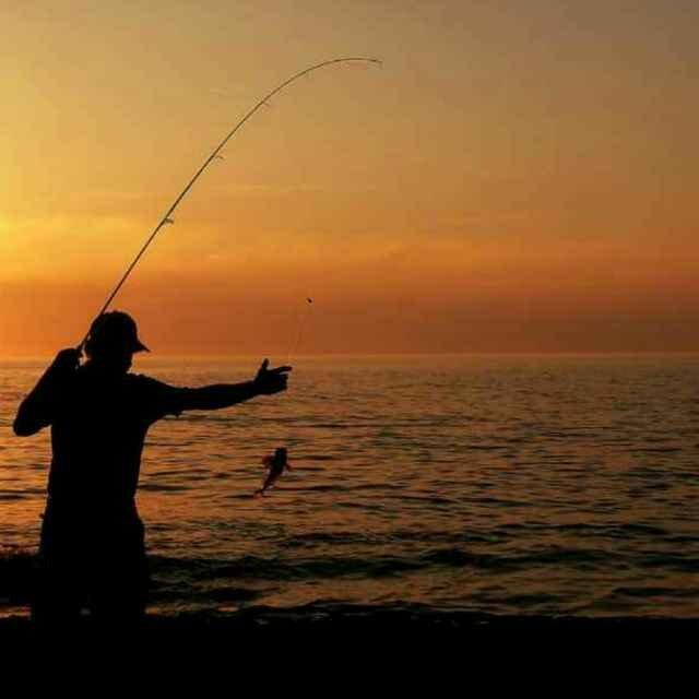 生活中离不开钓鱼