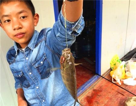 飞龙湖两天钓.... 蚯蚓饵料钓鲈鱼