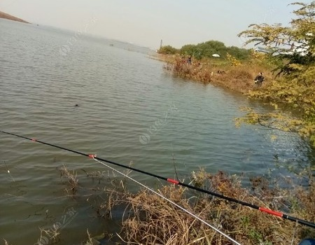 燕山水库不是想象中的过瘾 蚯蚓饵料钓鲤鱼