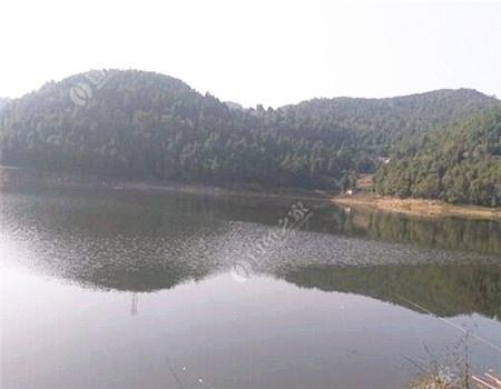 我与莲花湖的故事 钓鱼之家饵料钓鲤鱼