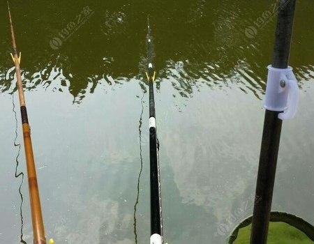 跟我一起化式釣具物 化氏餌料釣草魚