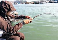 冬季使用筏釣竿作釣的技巧