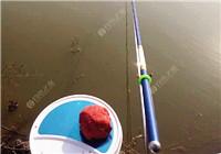 釣魚人必須知道這幾種魚的生活習性