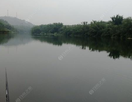 大同河偶遇小黑 龙王恨饵料钓鲮鱼