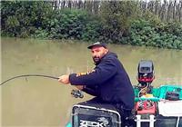 《路亞視頻》男子野外獵獲野生大鯰魚