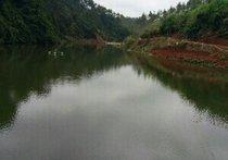 大塘角钓鱼场