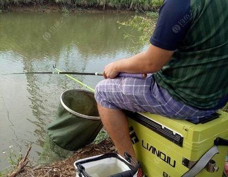 天氣晴朗好釣魚 釣魚之家餌料釣鯽魚