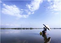 有风天气钓鱼必学的应对技巧