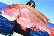 钓鱼图片 细数那些钓到的比人还大的鱼