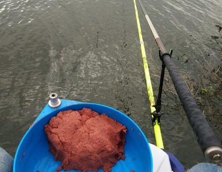 夜戰水庫,青魚沒有釣到,羅非狂拉到手軟 老鬼餌料釣羅非魚