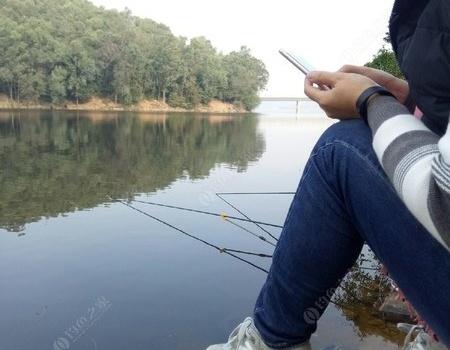 這么好的鯪魚怎么會有問題呢 老鬼餌料釣鯪魚