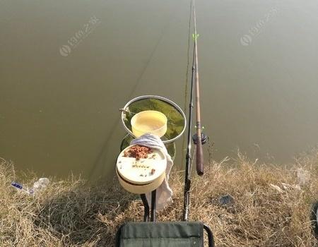 周日与鲫鱼大王有个约会 钓鱼之家饵料钓草鱼