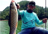 《藍旗魚小汐路亞視頻》 巡邊搜軍魚
