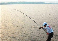 解析抛竿与海竿钓鱼的四个技巧