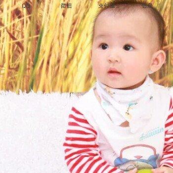 zhangfei11