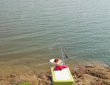 舍近求远,还是一碗小鱼命! 化氏饵料钓鲮鱼