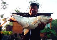 《渔道中国》86期 小钩细线 巧遇三青台大鲤鱼