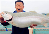 《游钓中国》第二季31集 大毛筏钓刘家峡 擒获巨物三文鱼